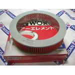 Air Cleaner Element (Genuine)