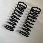 "Rear Suspension 5cm/2"" Lowering Springs (B310)"