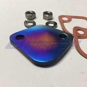 Fuel Pump Block Off Plate (Titanium)